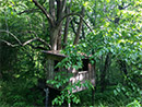 -- tree house on property (photo by Russell Smith of Clyde, NC)